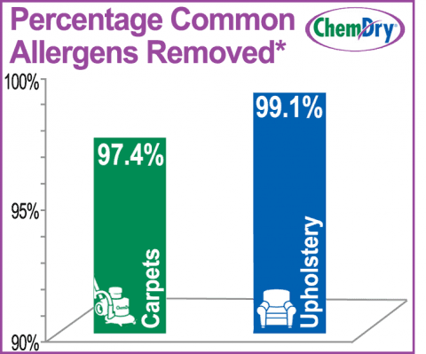 chemdry cleaning results